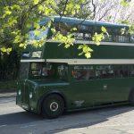 LightNight Bus