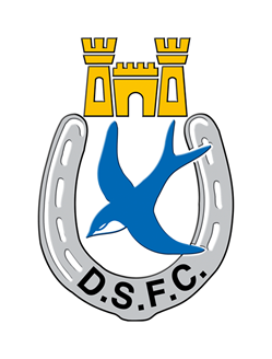 Preview: Dungannon Swifts (A)