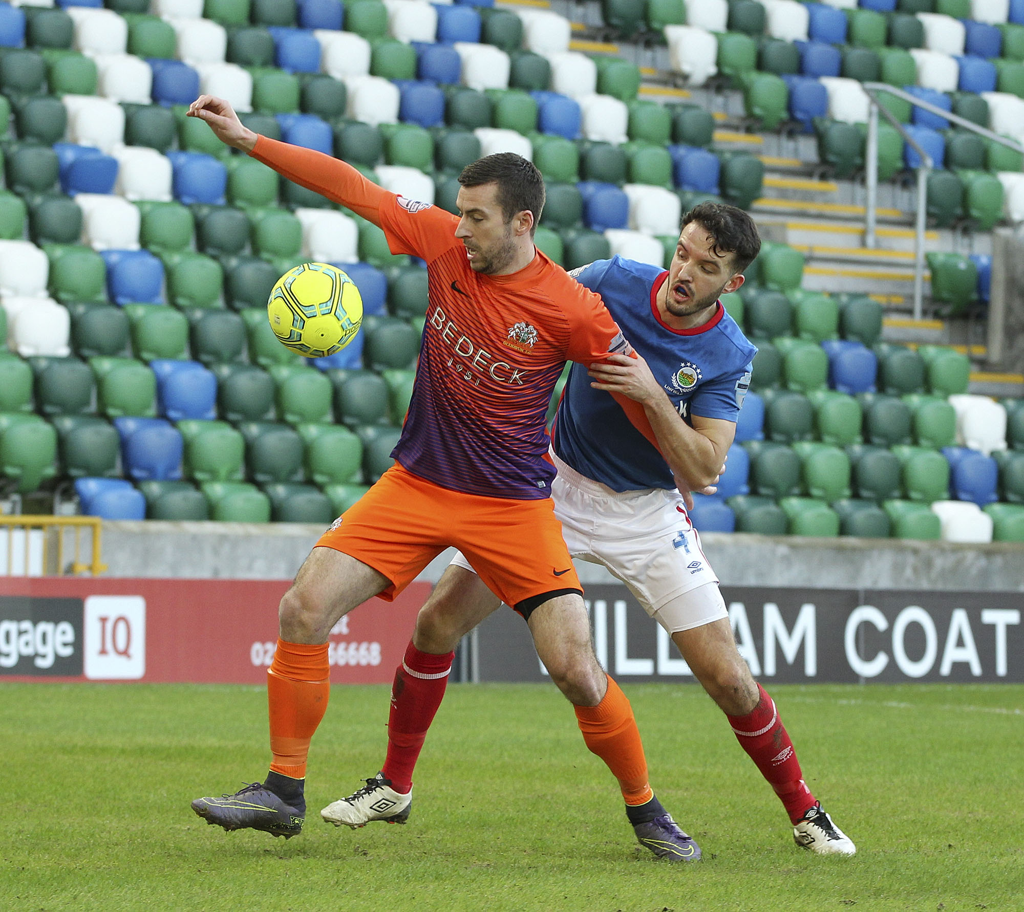 Preview: Linfield v Glenavon