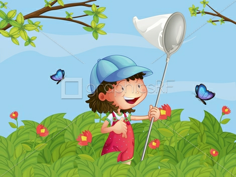 где и как ловить бабочек