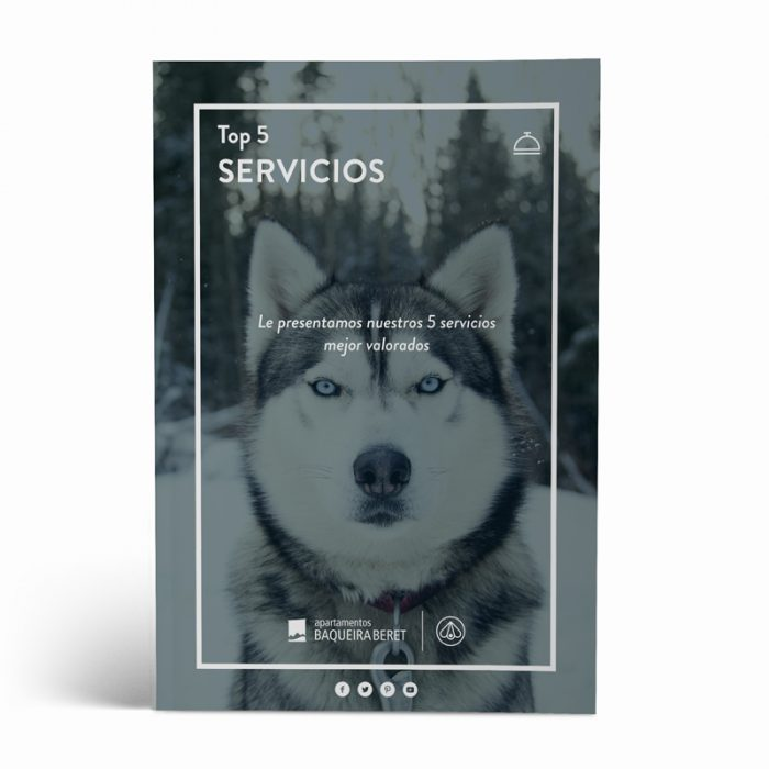 top5_servicios