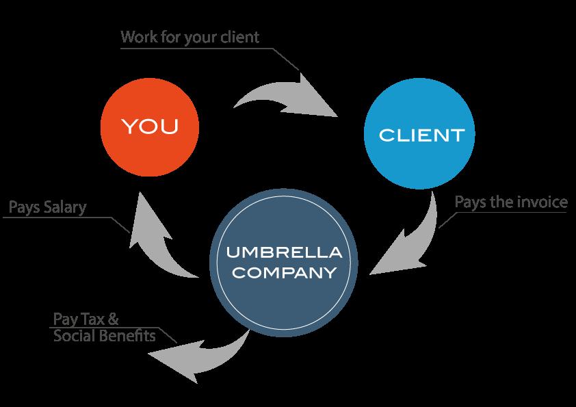 flowchart-of-umbrella-employment-