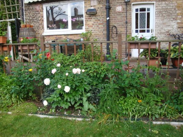 Open gardens4
