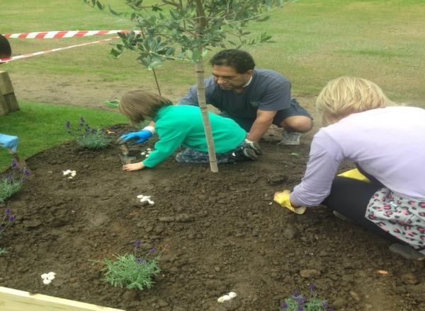 Abbotshall Garden (3)