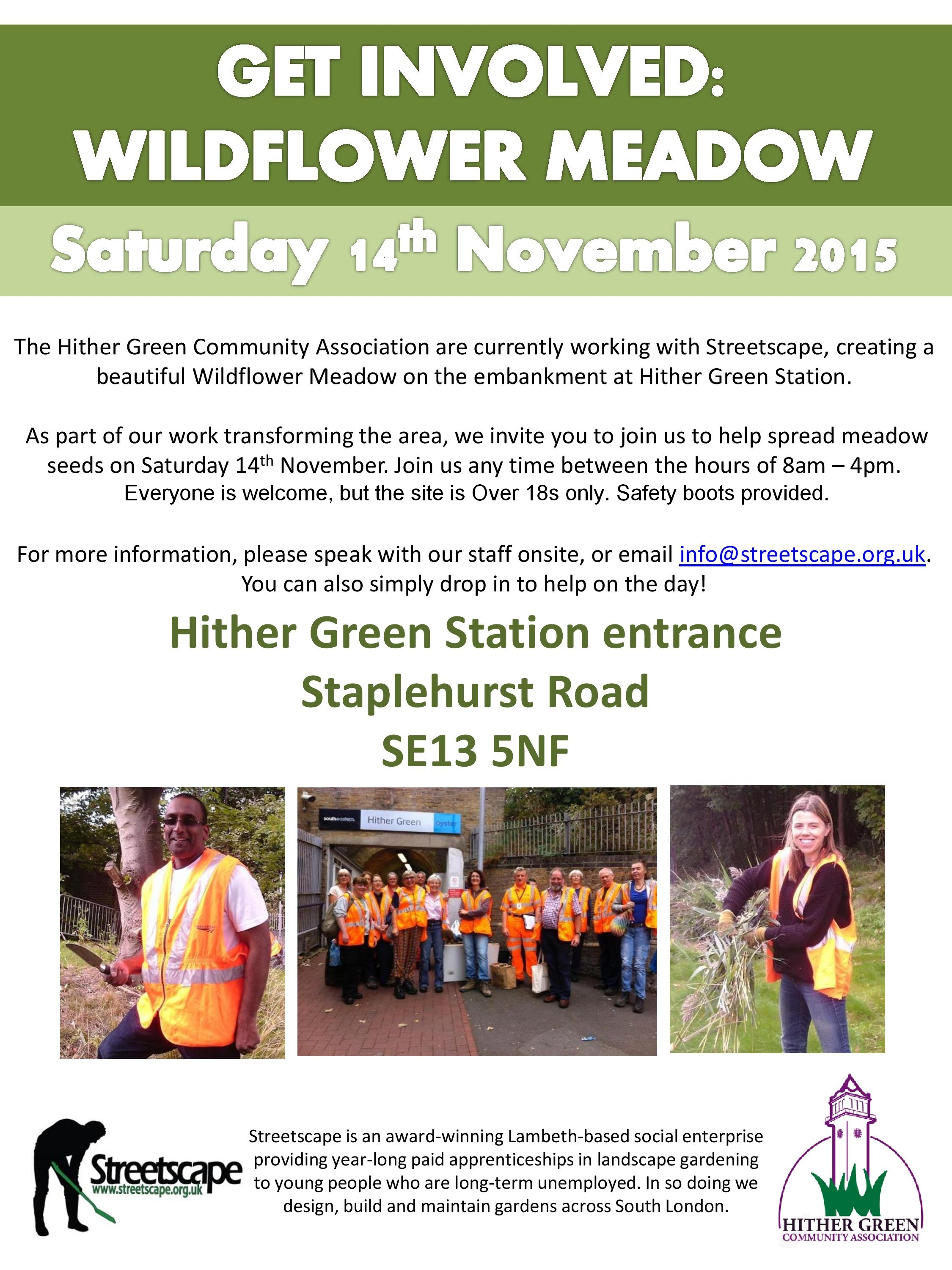 Hither Green Wildflower Day Poster-page-001