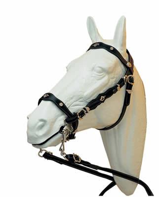 Cabezada portuguesa ludomar cortezia para bocado de hipisur for Cabezadas para caballos