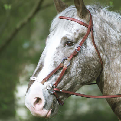 Cabezada de montar western side pull a la nariz for Cabezadas para caballos