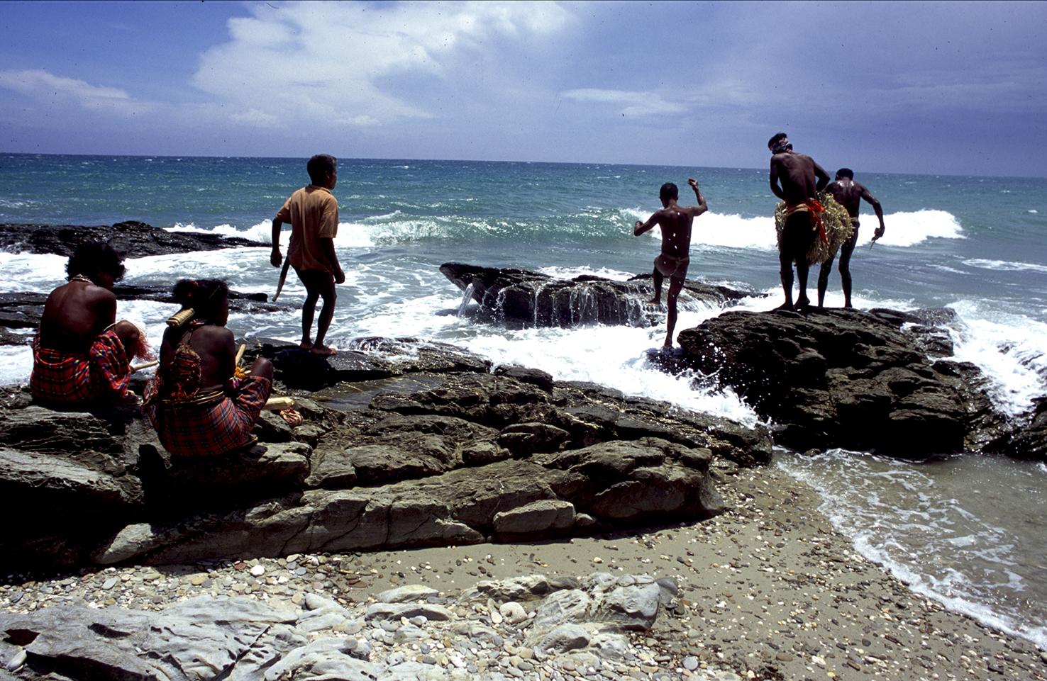 Tarok dancing on the shores copia