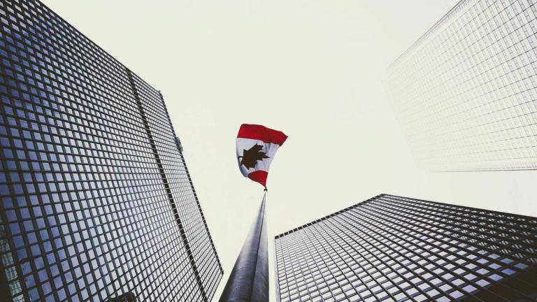 Canada : désigner un représentant fiscal pour devenir importateur non résident