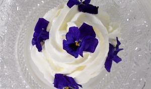 Meringue glacée et son sorbet maison Une idée de dessert 100% maison ...
