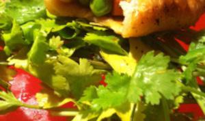 वसंत सब्जियों के साथ समोसे - Samosas aux légumes