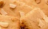 Biscuits java
