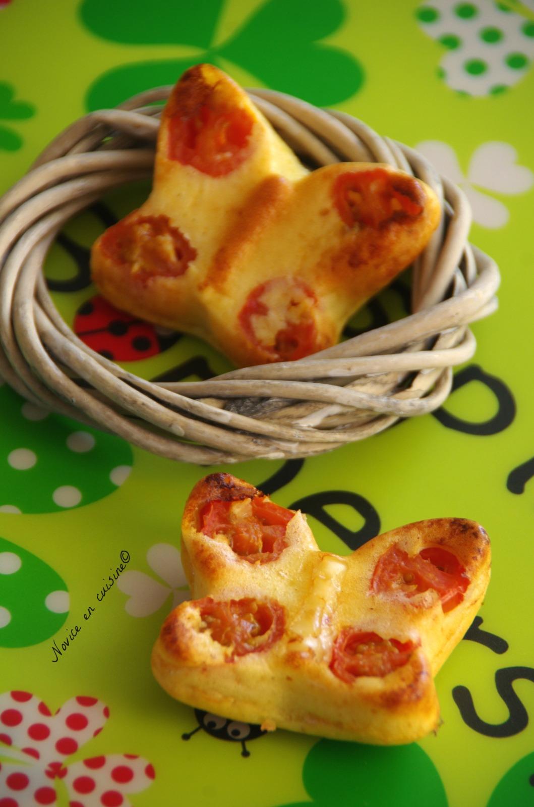 Recettes de parmesan par le blog de novice en cuisine papillons de parmesan tomates cerises - Cuisiner les tomates sechees ...