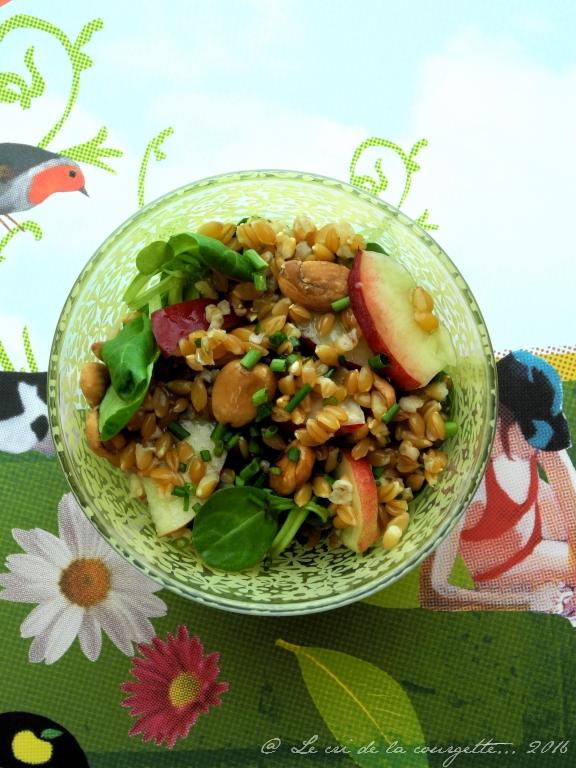 Recettes de salade par le cri de la courgette salade - Cuisiner le petit epeautre ...