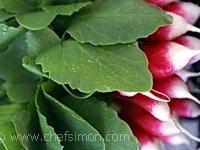 Botte de radis avec fanes