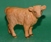 Beswick Highland Calf Model No