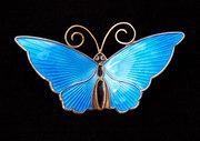 Silver Butterfly Brooch David