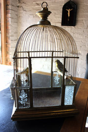 Architectural Bird Cage with T
