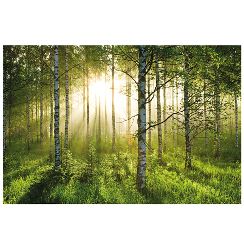 FERRARI NEW YORK /& MORE LONDON FOREST BRICKS WORLD MAP WALL MURALS