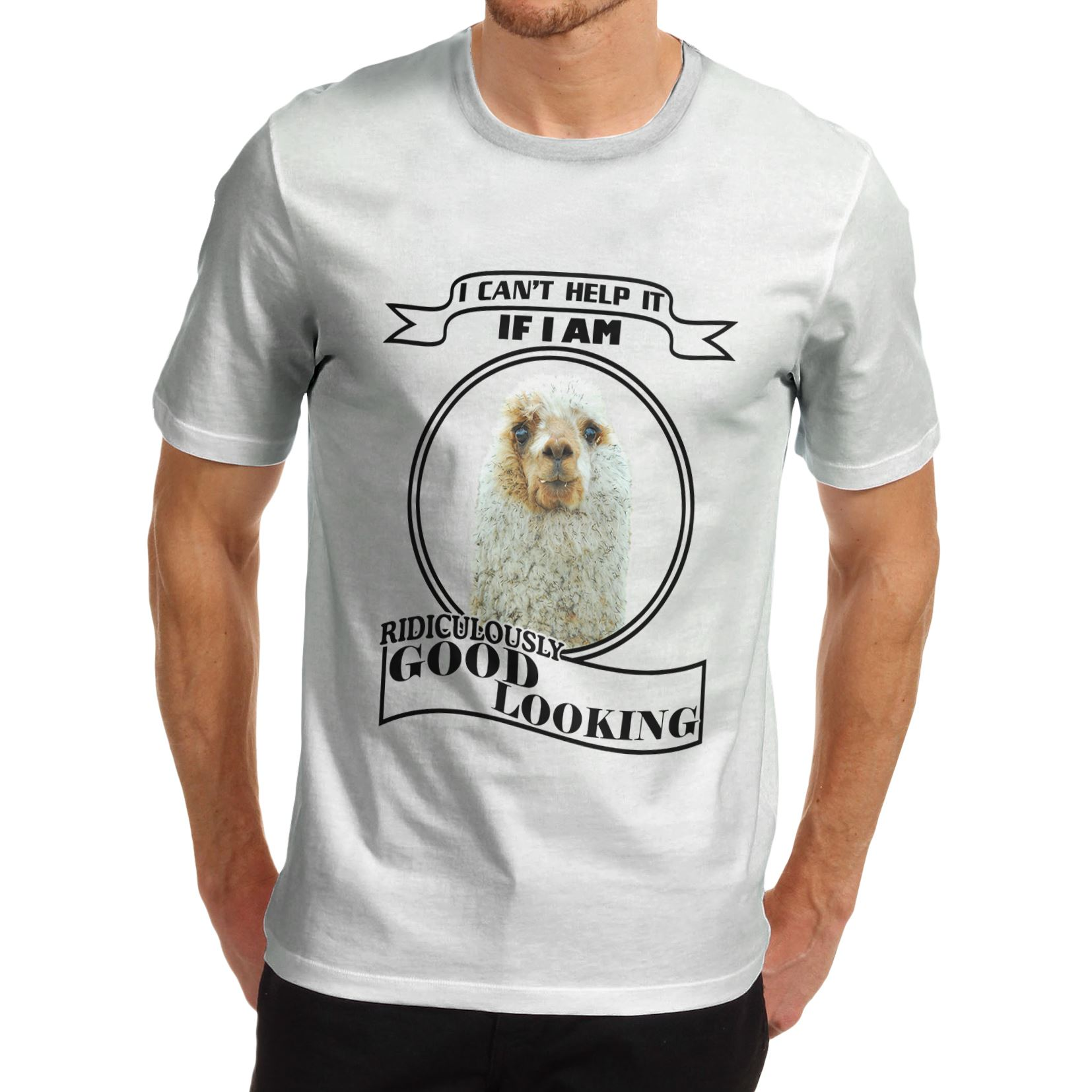 Twisted Envy Men/'s Ridiculously Good Looking Llama Funny T-Shirt
