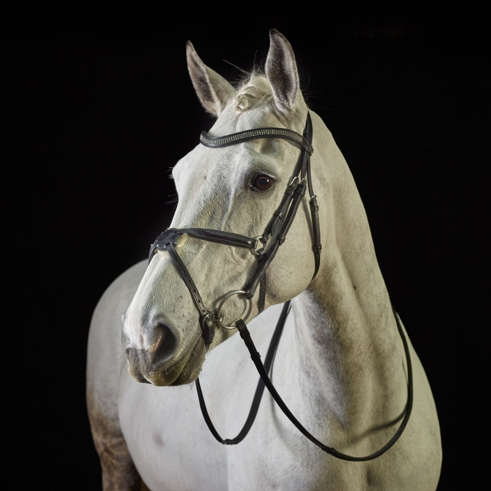 GFS Crystal Grackle Bridle with Rubber Reins