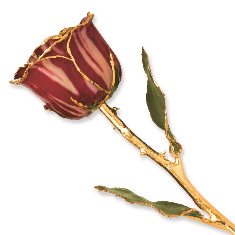Long Stem Lacquer Dipped 24K Gold Trim Genuine Rose MSRP $219