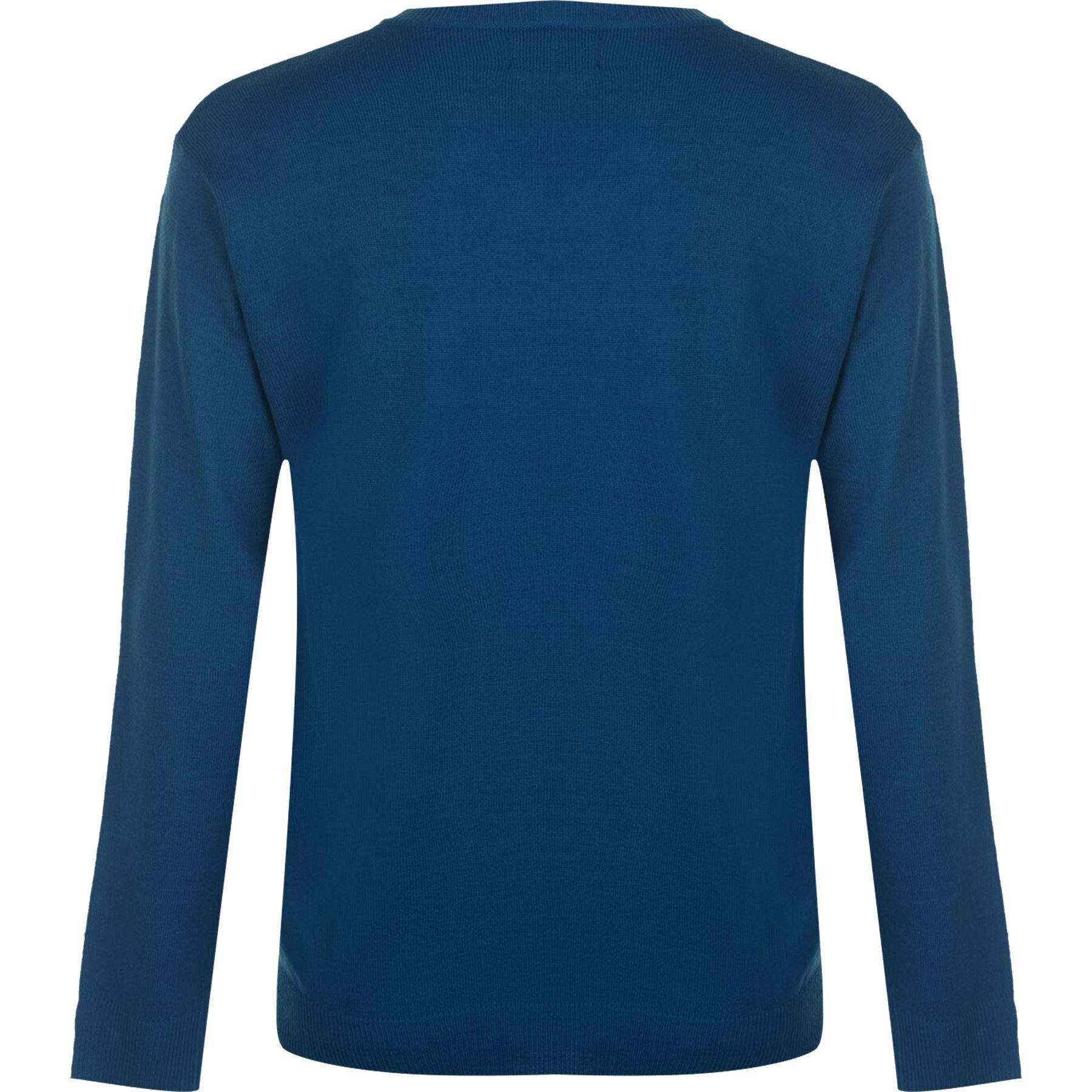 Mens V Neck Jumper Knitted Sweater Pierre Cardin IZOD Top Pullover Knitwear