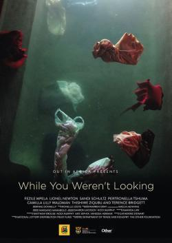 While You Weren't Looking - Vision Filme