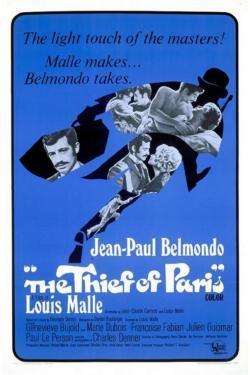 Il ladro di Parigi - Film in Teatri