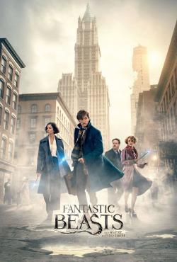 Fantastic Beasts and Where to Find Them - Now Playing In Theaters