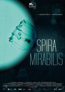 Spira Mirabilis - Film in Teatri