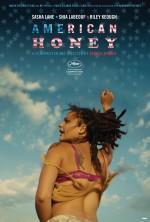 American Honey - Vizyondaki Filmler