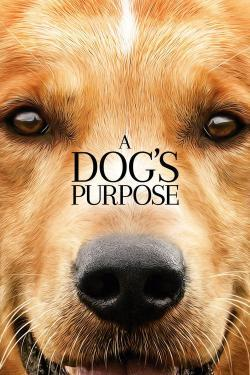 A Dog's Purpose - Movies In Theaters