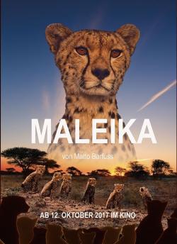 Maleika (2017) - Vision Filme