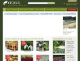 www.crocus.co.uk