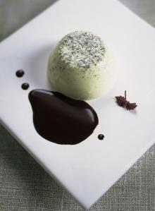 Green tea and vanilla pannacotta with chocolate sauce