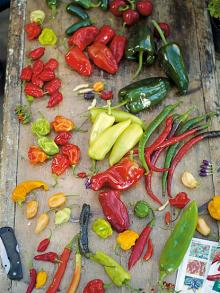 Grilled chilli dressing