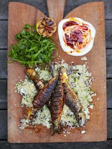 Harissa sardines with couscous salad
