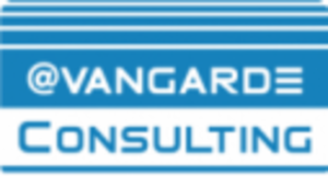 Avangarde Consulting S.r.l.