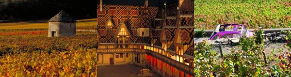 Bourgogne Automne