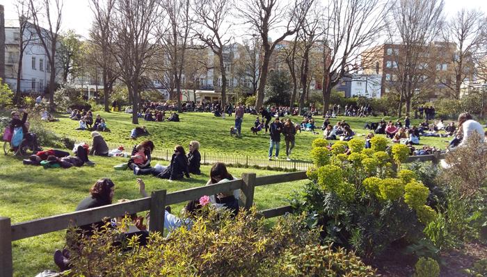 Brighton Parc