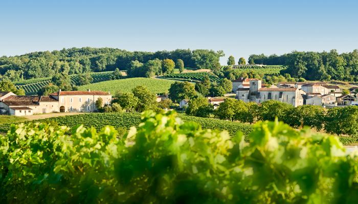 S jours et d couvertes au c ur du vignoble de cognac for Plan de cognac