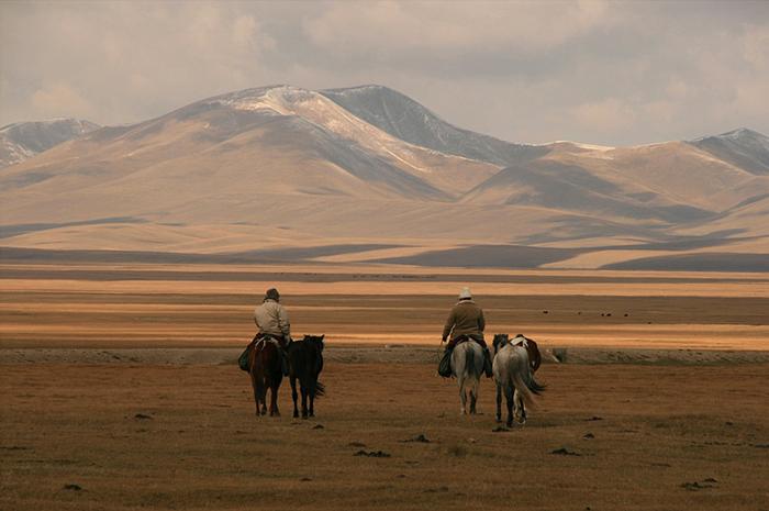 Kirghizistan chevaux