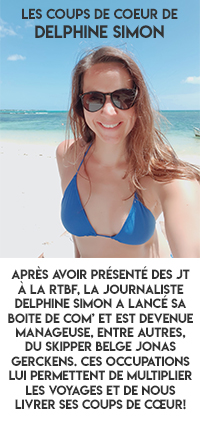 Delphine Simon Encart 3