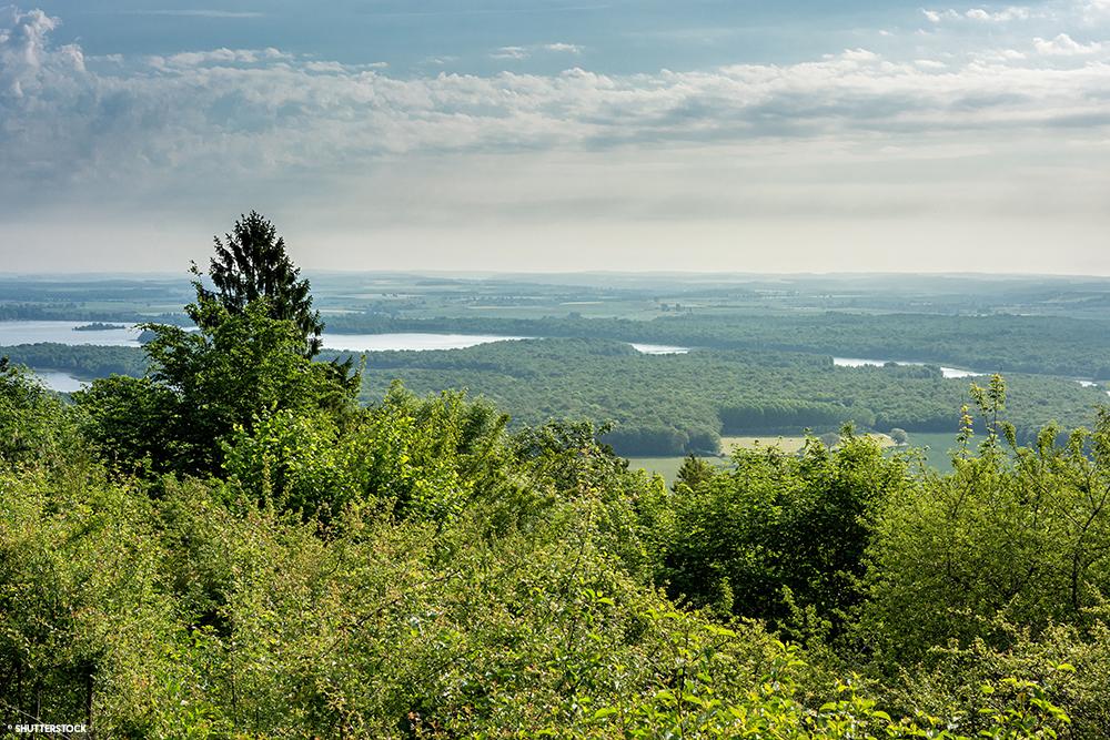 Meuse Forêt Lac