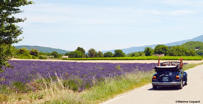 Provence Printemps Deuche