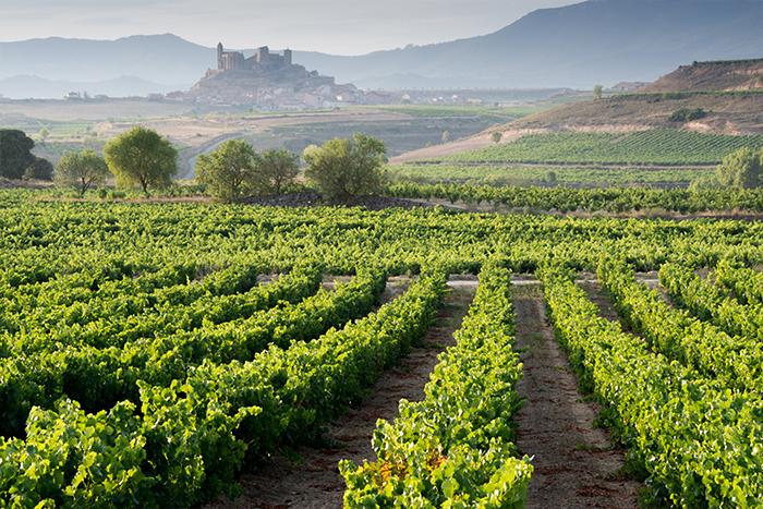 Route Vins Espagne 4