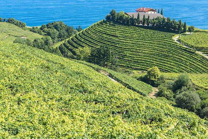 Route Vins Espagne 5