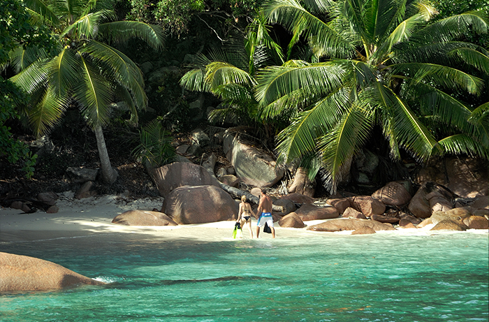 Seychelles Mariage Plongée