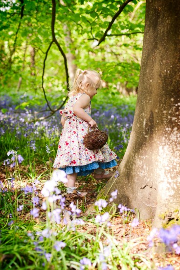 Bluebell & Spring photography
